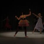 Gala de danse 2017 (2)