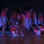 Gala de danse 2017 (4)