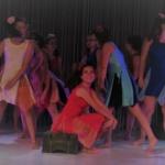 Gala de danse 2017 (9)